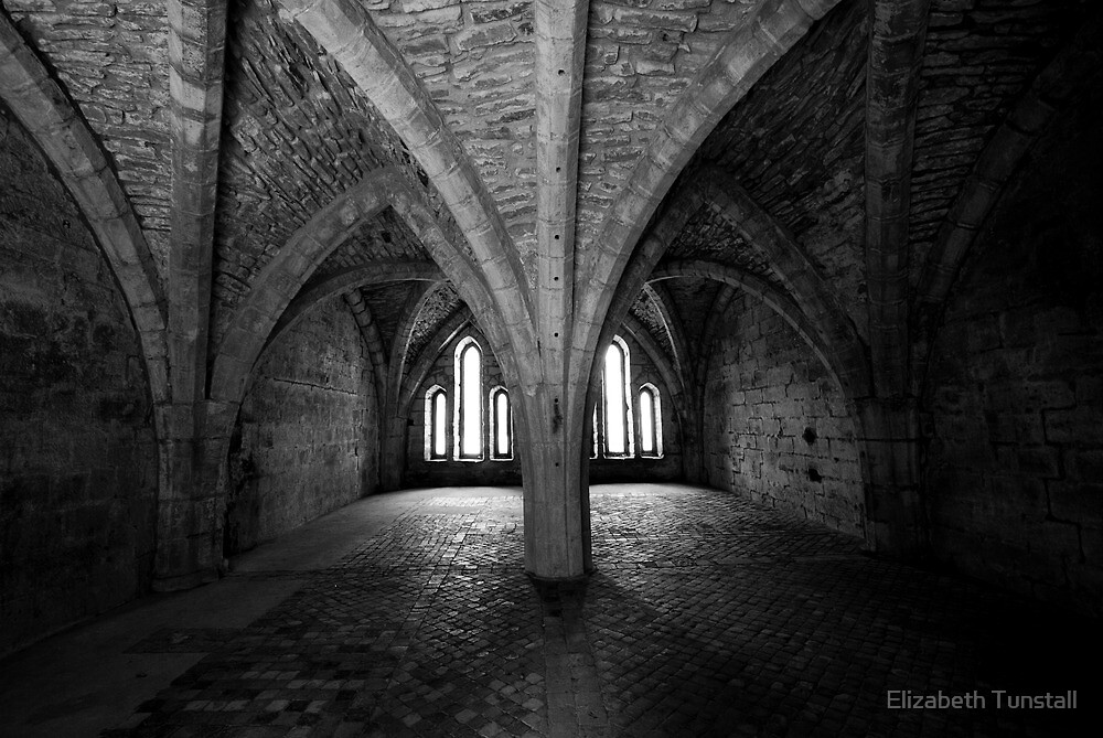 The Chamber by Elizabeth Tunstall