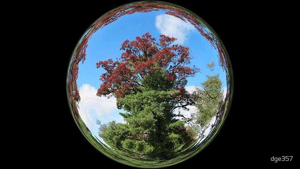 WeatherDon2.com Art  215 by dge357