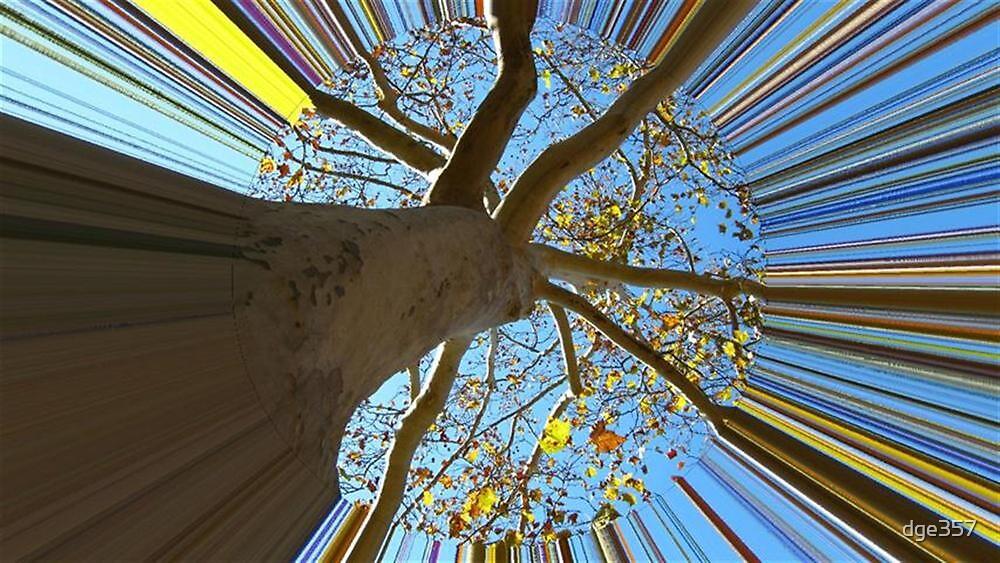 WeatherDon2.com Art 226 by dge357