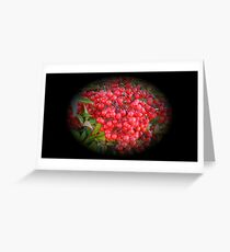 WeatherDon2.com Art 264 Greeting Card