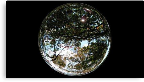 WeatherDon2.com Art 292 by dge357