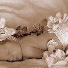 Baby Love by PrettyReckless