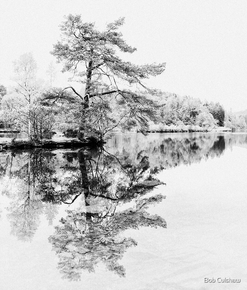 Reflections by Bob Culshaw