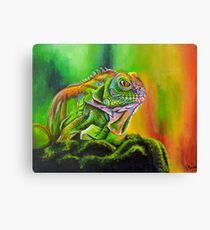Nature's Rainbow Canvas Print
