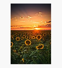 Light Of The Plains Photographic Print