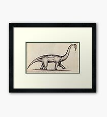 The Sauropod Framed Print