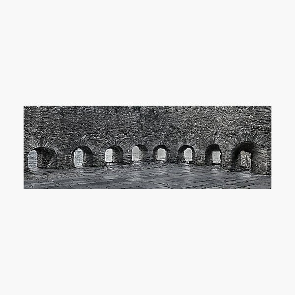 Bayard's Cove Fort Photographic Print