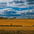 Rolling in the hay by Alex  Motley