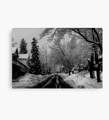 A Good Day to Hibernate Canvas Print