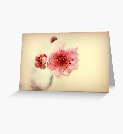A Promise Of Spring Greeting Card