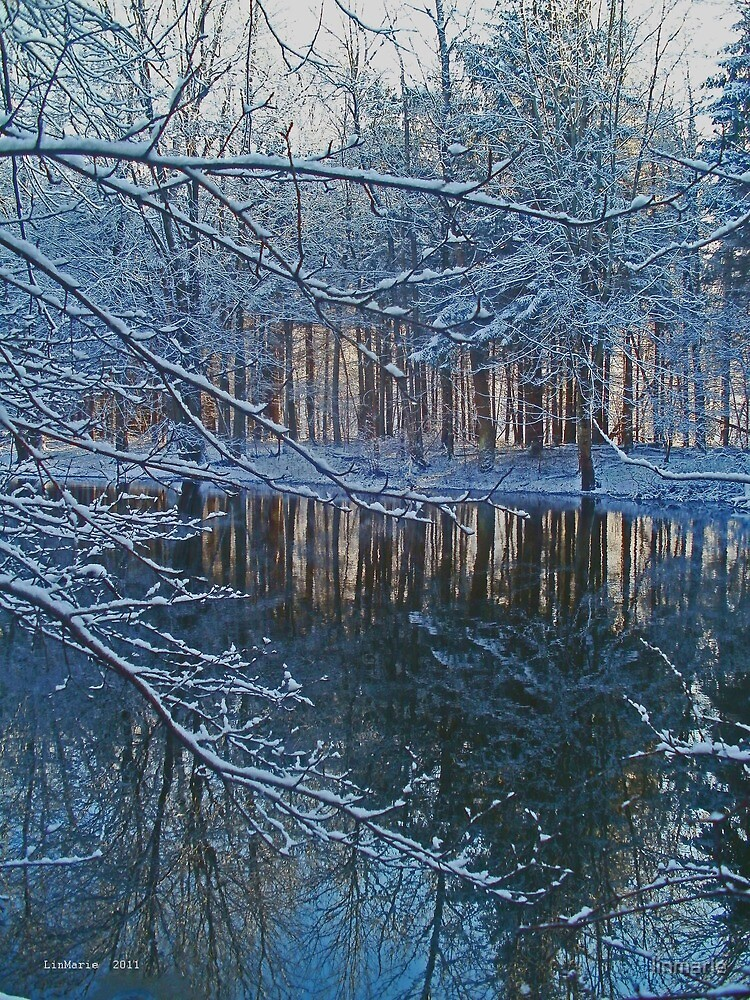 December Tenth, Two Thousand and Eleven ~ VI~ by linmarie