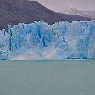 """Excursión al ventisquero """" Campos de hielo Sur """" by cieloverde"""