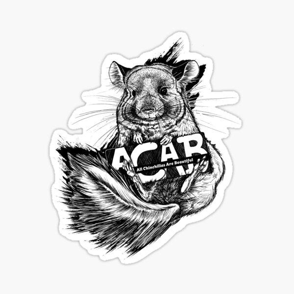 Chinchilla – ACAB (All Chinchillas Are Beautiful!) Sticker