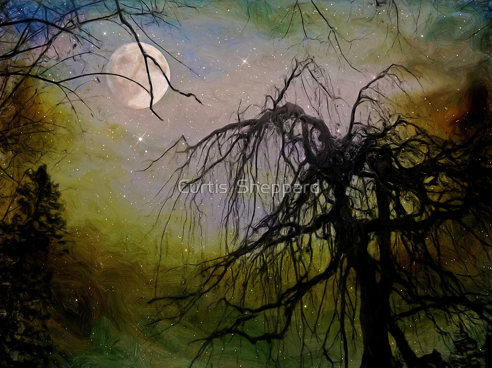 By The Light of The Silvery Moon II  by Curtis  Sheppard