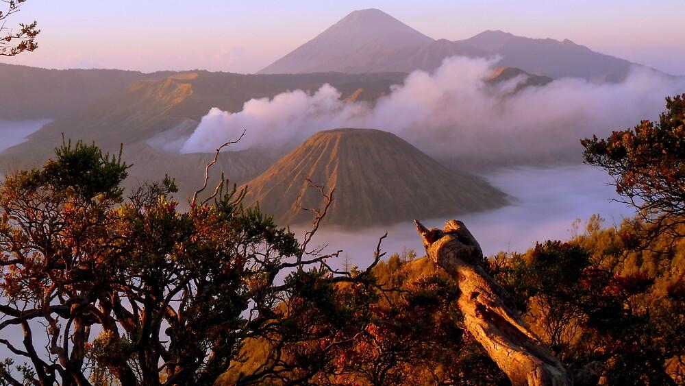 Mount Bromo by Brian Bo Mei
