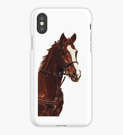 Proud - Thoroughbred Horse iPhone & iPod Cases iPhone Case