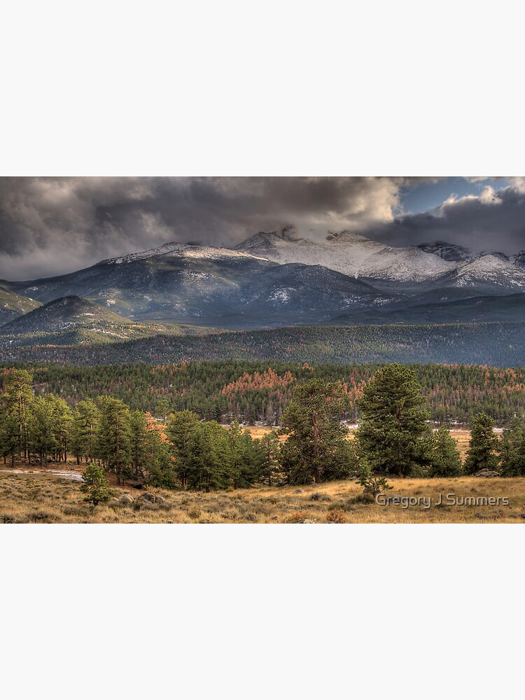 Fall  In Rocky Mountain National Park  by nikongreg