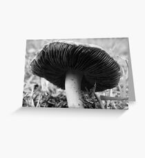 One Little Mushroom Greeting Card