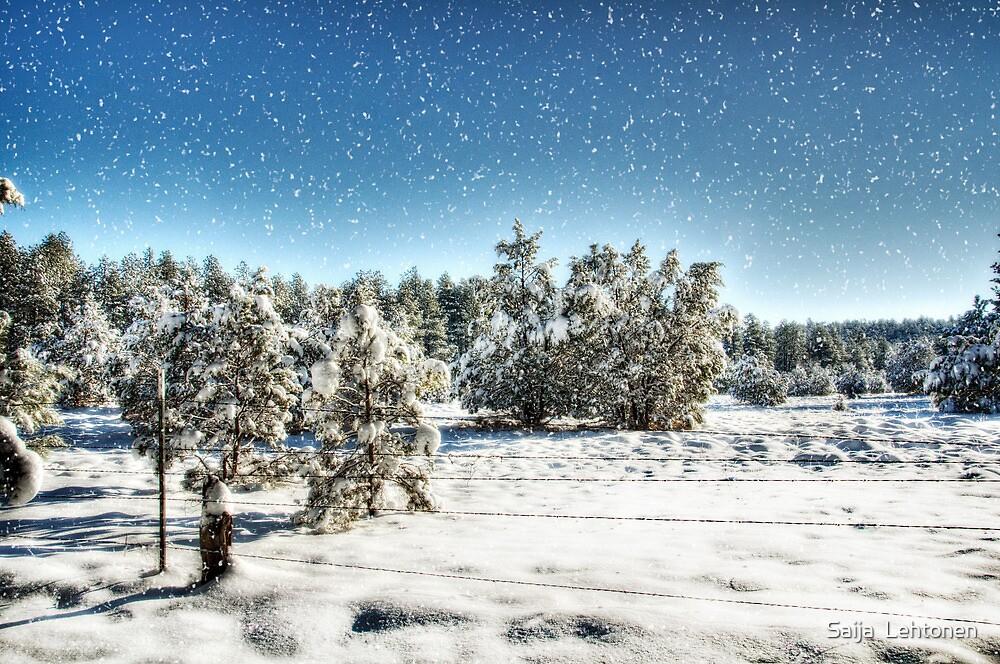 I'm Dreaming of a White Christmas  by Saija  Lehtonen