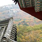 Temple Roofs against the Mountain by Jane McDougall