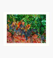 When Fruits Ripen Art Print