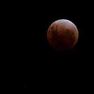 Lunar Eclipse - December 10 2011 by Sandra Chung