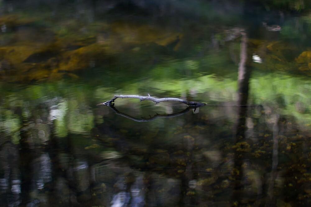 River by Ben |  Greg