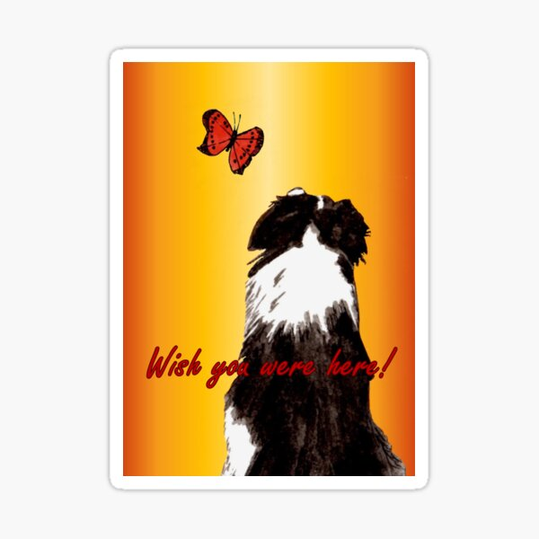 Wish You Were Here - Greeting Card Sticker