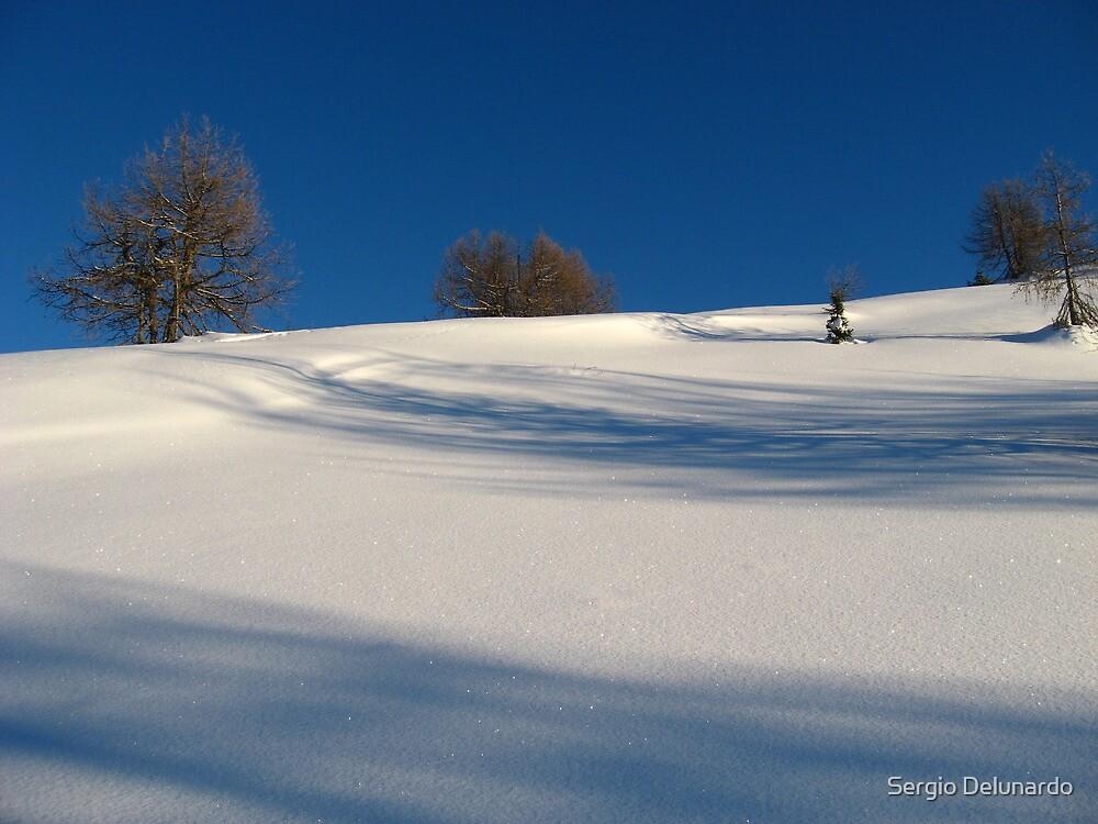 Winter scene by Sergio Delunardo