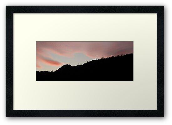 Dersert Sunset by Regenia Brabham