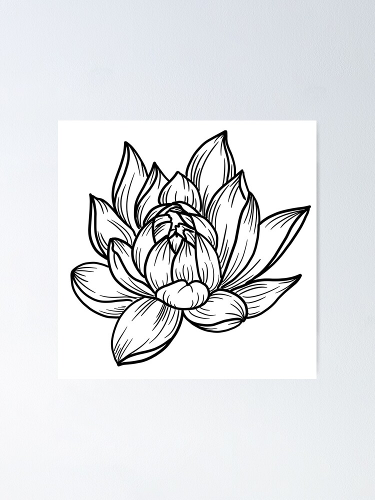 Simple Lotus Flower Poster By Amberbernay Redbubble