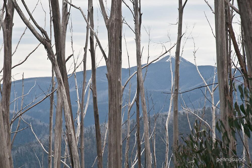 Mt Bogong by pennyswork