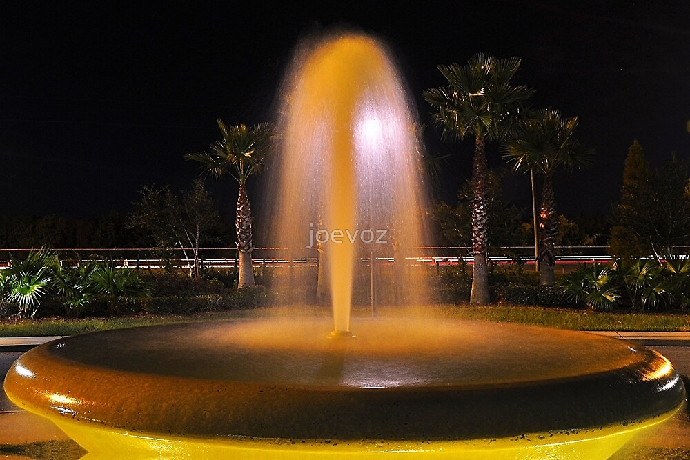 Water Fountain Bowl  by joevoz
