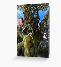Small Plant Survives Among the Cypress Knees  Greeting Card