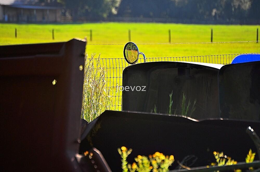 Rear View Mirror  by joevoz