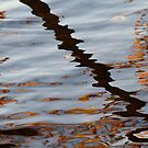Pond Line by Lynn Wiles
