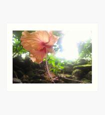 Heavenly Flower Art Print