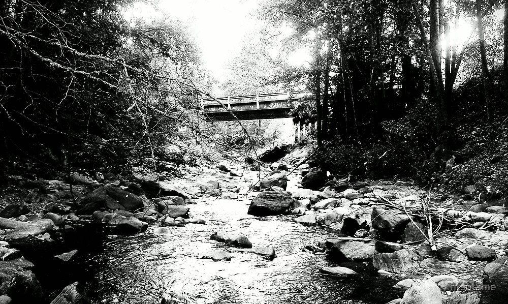Black and white of creek in Chase BC by ntsotame