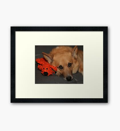 """""""I'm HOW Old In People Years ?!!"""" Framed Print"""