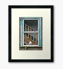 Solitary Sentinel Framed Print