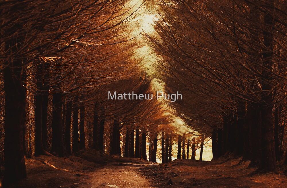 December by Matthew Pugh