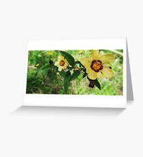 Reaching To The Sun Greeting Card