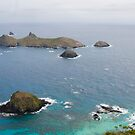 Admiralty Islets - Lord Howe Island by tarnyacox