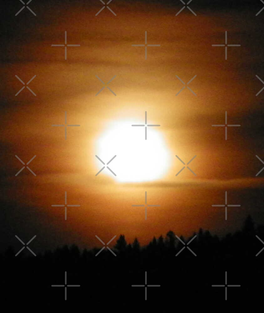 Pining for the Moon by Betty  Town Duncan