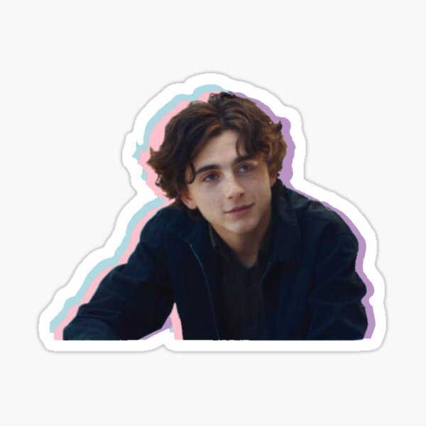Timothee Chalamet Pastel Aesthetic  Sticker