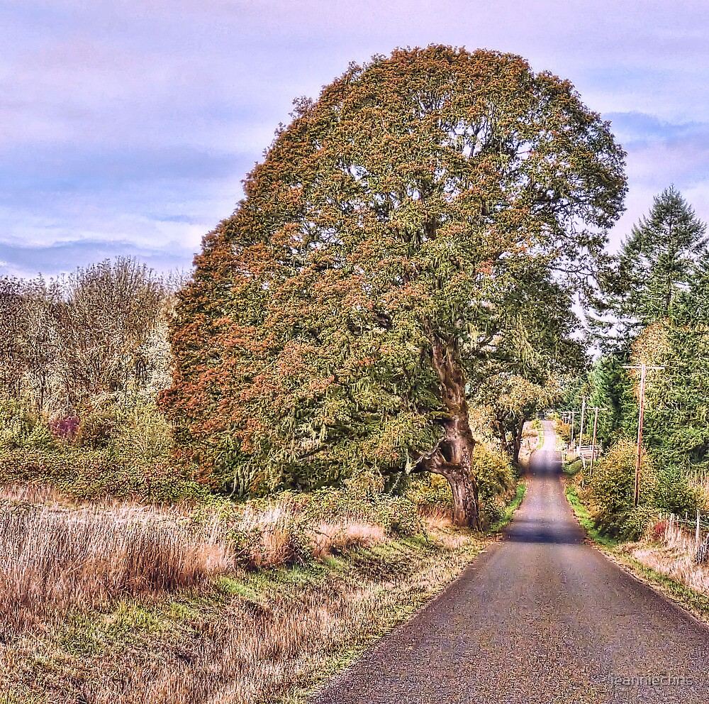 A long country road by jeanniechris