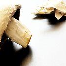 Nood Shroom by David Mellor