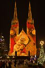 Christmas Lights 2 by Werner Padarin