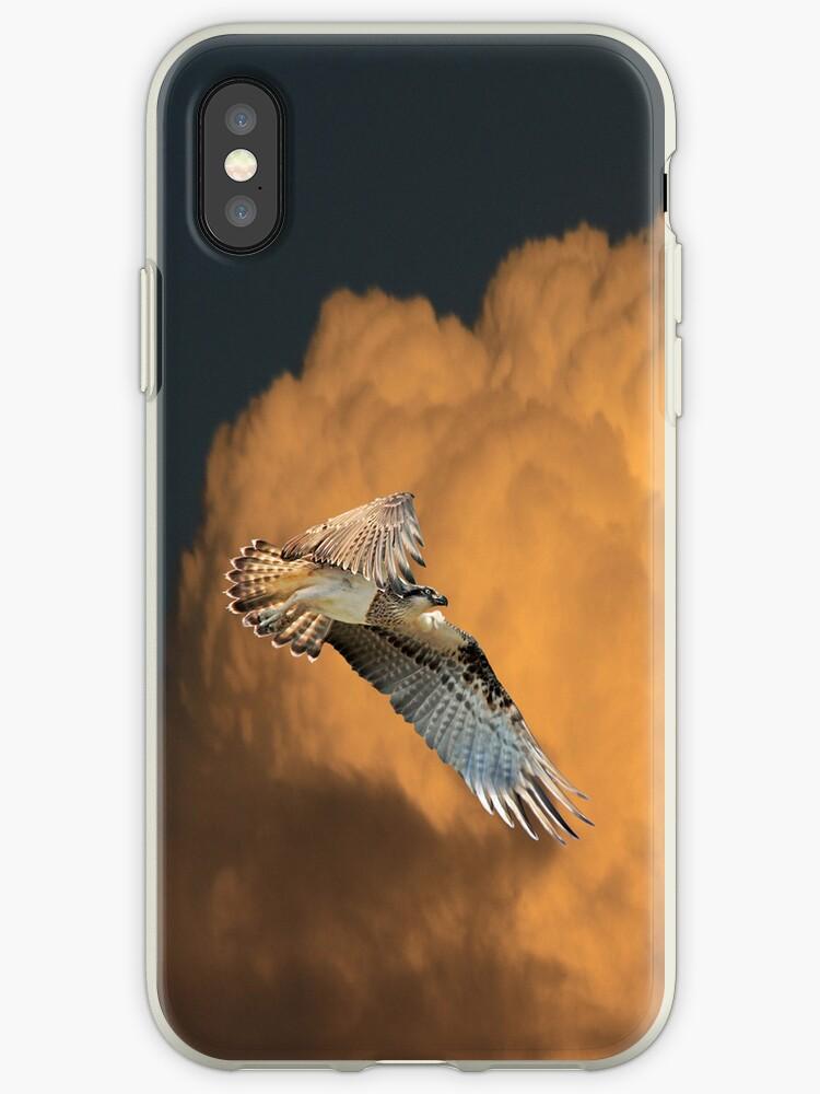 Sunset Osprey iPhone Case by byronbackyard