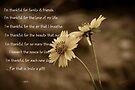 I'm thankful for......... by Vicki Pelham